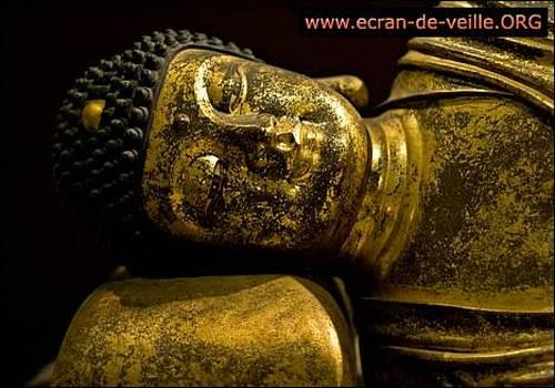 Telecharger Bouddhisme EV