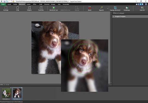 Telecharger PhotoPad - Éditeur d'images gratuit